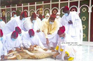 מלך מרוקו שוחט את הכבש בחג הקורבן - עיד אלאדחא
